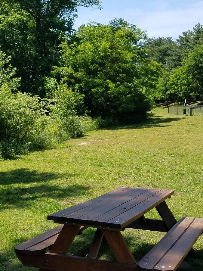 Picnic area at Lincoya Bay Townhomes in Nashville, TN.
